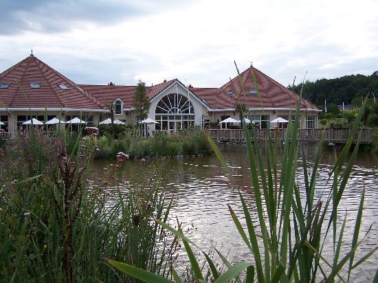 A moins de 3 heures de paris un d paysement total les for Chambre zoo de beauval